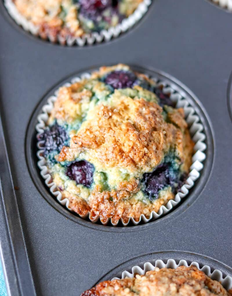 Single up close blueberry muffin in baking pan