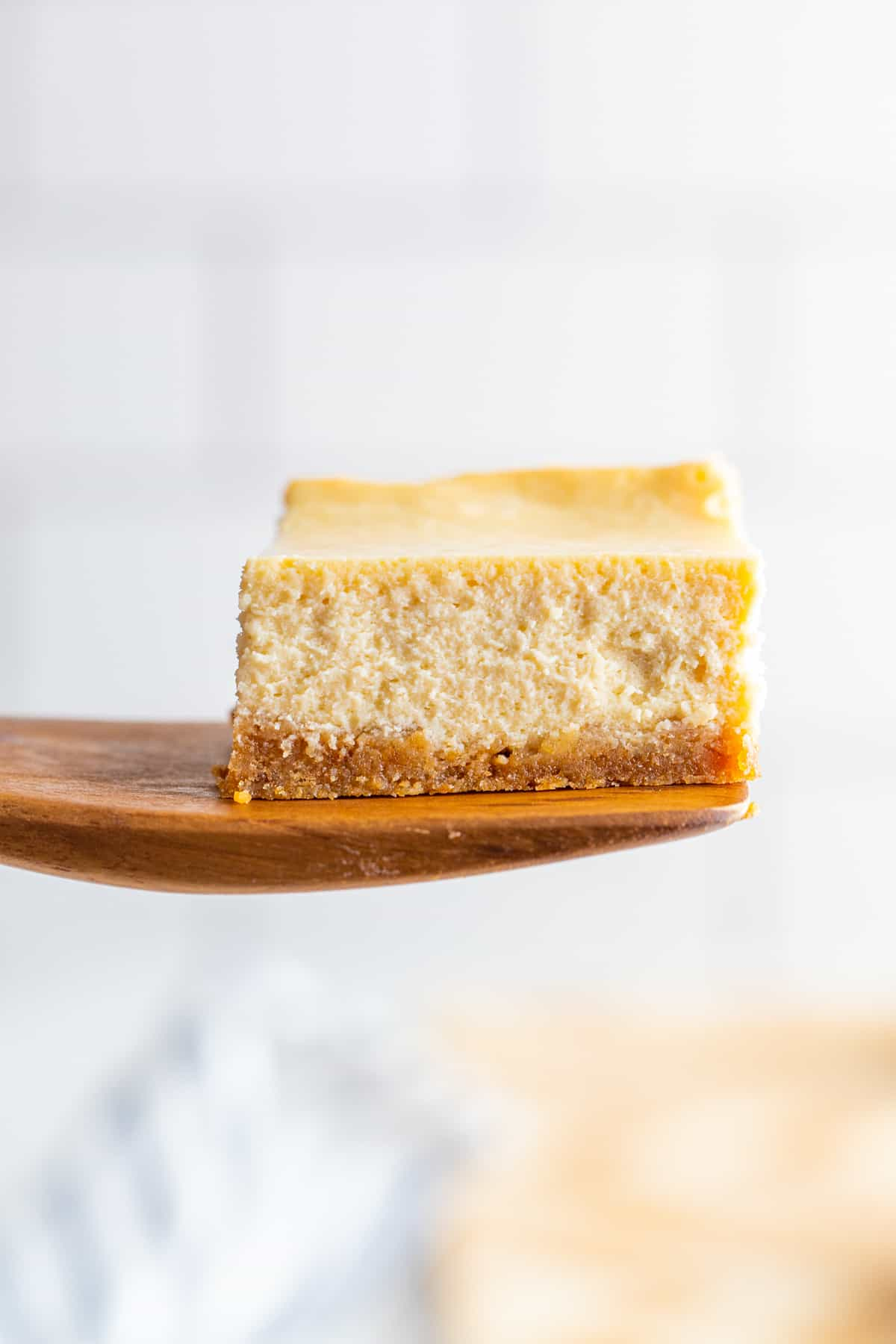 Cheesecake Bar on spatula
